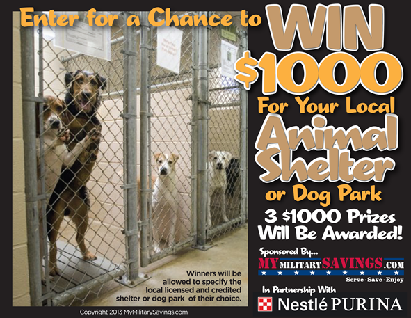 Win $1000 for your local Animal Shelter
